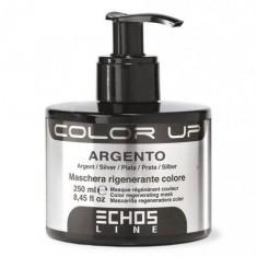 Color up тонирующая маска argento 250мл. серебристый ECHOSLINE